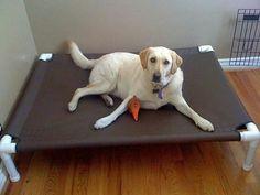 Cama de cachorro feito de cano de pvc e lona