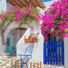 Paros, Greece ...  Traditional white houses, splashes of color on doors and shutters and colorful bougainvilleas in white-washed alleys, compose the setting of your dreams!   #Paros#parosisland#Prodromos#cyclades#Greece#greek#islands