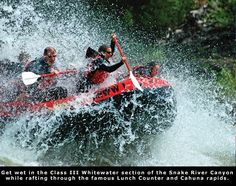 Jackson Hole Whitewater - White Water Rafting on the Snake River in Jackson Hole Wyoming Jackson Hole Mountain Resort, Jackson Hole Wyoming, Grand Teton National Park, National Parks, Snake River Canyon, Summer Jobs, Whitewater Rafting, Recreational Activities, Future Travel