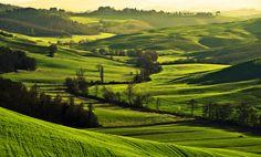 Ecco appunto, verde come la speranza! [Crete senesi] via @Agriturismo.st
