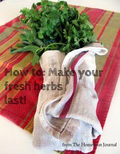 How to Make Fresh Herbs Last