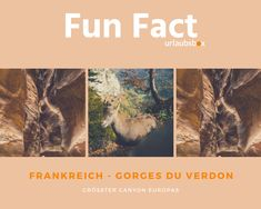 #Frankreich #France #GorgesDuVerdon  Gorges du Verdon ist der größte Canyon Europas. Gorges du Verdon is the biggest Canyon of Europe.  #urlaubsbox #reisen #travel #canyon #europa Hotels, Fun Facts, France, Movie Posters, Europe, Travel, Family Activity Holidays, Wtf Fun Facts, Funny Facts