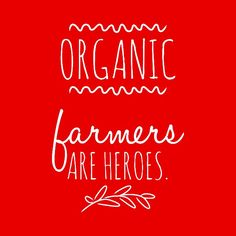 Organic farmers are heroes! Thank you, organic farmers, for your heroic efforts to try to help protect mankind, and the biodiversity upon which our well-being depends. Your hard work is DEEPLY appreciated. Reminds me of my Dad! Organic Farming, Organic Gardening, Sustainable Farming, Sustainable Living, Sustainability, Food System, Farm Life, Inspirational Quotes, Healthy Living
