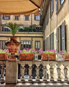 < v i e w >  The stunning balcony inside this building (in Milan). What a view?  || Buongiorno mi sono ricordata di non avervi fatto vedere dove la scorsa settimana sono stata invitata. Un balcone all'interno della corte di un Palazzo in pieno stile architettonico milanese fiori sole tante cose buone da mangiare e tante belle persone.     #igersmilano #myunicornlife #milanodavedere #milanocityofficial by insta_yourpassion