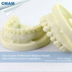CMAM-DENTAL05 Tooth Prepared Practice Dental Model,  Medical Science Educational Teaching Anatomical Models