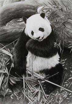 Panda ~ CubistPanther