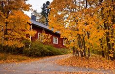 a house in Finland