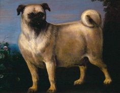 John Wootton (1682 - 1765) A Pug in a Landscape (oil on canvas)	 (17th)