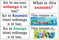 These resources have been gathered as part of our school professional development for 2013 with The Wānanga o Aotearoa. Kia ora to our kaiako Anaru and Tettere for sowing the seeds. School Resources, Teaching Resources, Teaching Ideas, Maori Songs, Bilingual Classroom, Montessori Homeschool, Maori Designs, Early Learning, Kids And Parenting