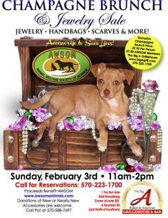 Flyer Design for AWSOM Animals Fundraiser
