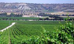 Abadia Retuerta wineries (Valladolid, Spain)  http://www.rusticae.es/bodegas-rusticae-espana/valladolid-bodega-abadia-retuerta