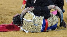 Because not always the bullfighter wins, the oportunity to fight back... something not every bull has.