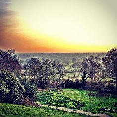 http://electroosmosisltd.co.uk #landscape #parkview #fog #richmondpark #spring #richmond #sunset #trees #londonparks #london #steps #pembrokelodge #england #panorama #sky #horizon #walks #jounquils #shire #atmosphere #moody #ambience #dusk #green #beautifulplaces #enchantedforest #magic #beautyfuldestinations #dramaticscenery #dramaticphotography