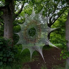 Image Nature, All Nature, Amazing Nature, Spider Silk, Spider Art, Spider Webs, Giant Spider, Land Art, Macro Photography