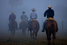 An Early Start  Adams Ranch, Florida