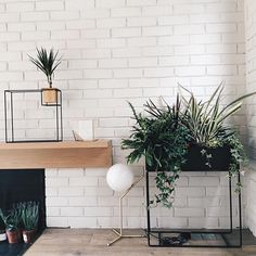 ferm LIVING Plant Box: http://www.fermliving.com/webshop/search/news-living-aw15/plant-box-black.aspx