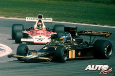 Ronnie Peterson su Lotus 76 - Ford  1974