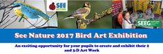 Exhibit your pupils' bird art work at Kent and Sussex Nature Reserves in 2017 - The Birdbox Project | Observing Nature in your School Grounds