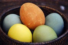 Easter Egg fun.. Naturally