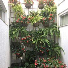 Jardim de inverno com painel vertical 🌿🌱 Conheça a @paisagismocantinho3!  Paisagismo | Manutenção | Reflorestamento Plantas Ornamentais | Jardins e Decoração  Tel: (62) 3218-2231 | (62) 3218-2640 | WhatsApp: (62) 98312-0104  www.cantinho3.com.br
