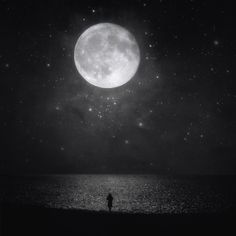 """""""I love the silent hour of night, For blissful dreams may then arise, Revealing to my charmed sight What may not bless my waking eyes."""" ~ Anne Brontë Best Poems of the Brontë Sisters / Image: Kasia Derwinska Luna Moon, Shoot The Moon, Sun Moon Stars, Moon Magic, Beautiful Moon, Moon Lovers, Magic Art, Moon Child, Night Skies"""