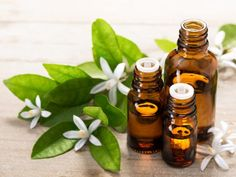 Essential Oils for Skin Care Recipes .Then try this best essential oils for skin care recipes and watch your skin glowing in 2 weeks. Essential Oil Aphrodisiac, Neroli Essential Oil, Neroli Oil, Frankincense Essential Oil, Essential Oils For Shingles, Essential Oils For Rosacea, Best Essential Oils, Oils For Scars, Ravintsara