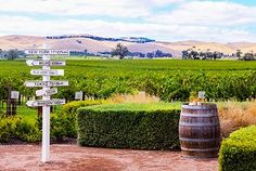 Read about Jacobs Creek Winery - Luxury in South Australia and view the Barossa Valley tours that will take you there Great Barrier Reef, South Australia, Tokyo, Places To Visit, Luxury, Outdoor Decor, Image, Tokyo Japan, Places Worth Visiting