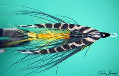 This is a fly i love to tie and fish, its a very old pattern first tie in the 1700s, and its one that is still work...