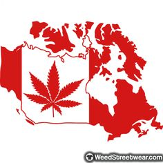 #ganja #weed #hippie #dank #dabs #highlife #kush #highsociety #weedstagram #hightimes #marijuana #cannabis #thc #stoner #cannabiscommunity Marijuana Leaves, Creative Infographic, Facebook Photos, What Happened To You, Lunges, Cancer, Illustration, Early Retirement, Ganja