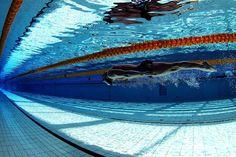 L'importanza di una corretta alimentazione nella pratica del nuoto Fornire la giusta dose di nutrimento ed esercizio fisico è la strada per il benessere psico fisico LINK: http://www.nuotomania.it/public/nuoto-notizie/view.php?id=566