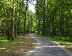 Greenway trails throughout Raleigh