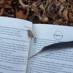 "Look at this quintessential autumn perfection with one of our favorite books!  caitlinisakittycat on IG: ""Wanted to take a book picture in the leaves & made friends with a cute little autumn moth.  #bookaholic #booklover #bibliophile #ilovebooks #girlwhoreads #bookstagram #igreads #booknerd #bookworm #books #booksbooksbooks #bookporn #bookaddict #currentlyreading #adiscoveryofwitches #deborahharkness #outside #leaves #autumn #fall #moth #feather #bookandleaves"""