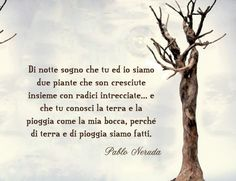 Rapa nui (poesia)