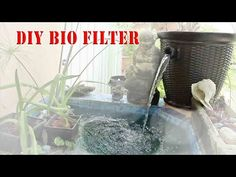 Looking for some easy to build and cheap DIY Koi pond filters? Read these incredible inspirations and build your self-built filter for your lovely koi pond! Pond Filter Diy, Pond Filter System, Pond Filters, Hydroponic Gardening, Organic Gardening, Gardening Hacks, Building A Pond, Turtle Pond, Diy Pond