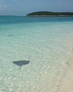 The very best things to do in the Exuma Cays (Bahamas) including swimming with stingrays.