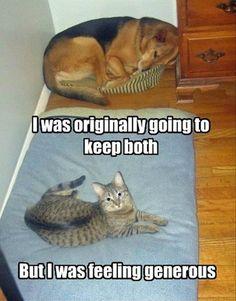 lol both are cute