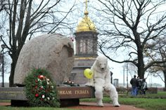 A Greenpeace activist dressed as a polar bear demonstrates against the detention of Arctic Sunrise crew members who were detained after trying to board an offshore oil platform. Photograph: Shamukov Ruslan/ITAR-TASS/Corbis