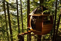 Just one of a collection of tree house designs.