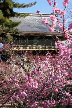 Kitanotenmangu, Kyoto