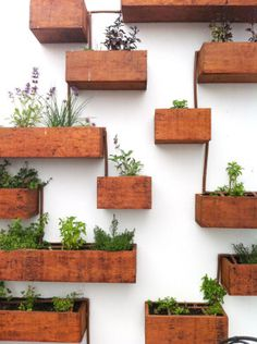 fall, Diy Indoor Herb Garden Wall Planter Mounted Living Buy Kitchen Ideas How To Make An: indoor herb wall garden Garden Wall Planter, Living Wall Planter, Planter Boxes, Planter Ideas, Wall Planters, Hanging Planters, Wooden Garden, Indoor Living Wall, Wall Mounted Planters Indoor