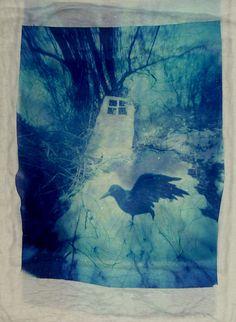 Raven: Pinhole Polaroid Emulsion Lift on Glass by John_fobes on Flickr
