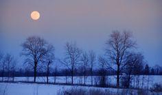 Winter solstice moonrise over the Conservancy Farm December 21, 2010. Photo by Scott Tyrrell #SEMIWILD http://semiwild.org/meet-the-protectors