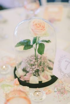 827 best unique wedding ideas images on pinterest 10 ideas for a beauty and the beast inspired wedding junglespirit Gallery