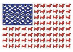 Doxies and America.  Nothing better.
