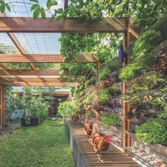 Aqua Perma Solar Firma, home to a couple with a passion for permaculture. Designed by CplusC Architectural Workshop. In our current issue. @__cplusc__