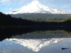 Mt Hood, Hood River County, Oregon — by The Camangian's. Mount Hood, A Land Of Majestic Beauty and Geography...This photo was just taken yesterday 032615 at Trillium lake...