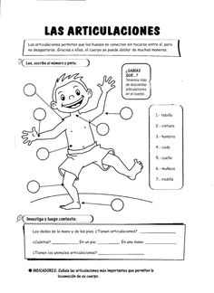 10 Las articulaciones Más Body Systems, Social Science, Science And Nature, Science For Kids, Spanish Class, Spanish Teacher, Spanish Lessons, Learning Spanish, Kids Learning