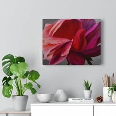 Coral Peony Wrap-around Canvas