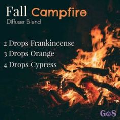 essential oil blends doterra dōTERRA or Young Living Essential Oil Diffuser Recipes From Got Oil Supplies Fall Essential Oils, Cypress Essential Oil, Essential Oil Diffuser Blends, Essential Oil Uses, Young Living Essential Oils, Diffuser Recipes, Aromatherapy Oils, Aromatherapy Recipes, The Fresh