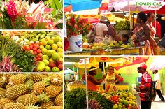 Dominica is blessed with an abundance of foods that everyone will enjoy. Thanks to its rich fertile soil and temperate climate, many types of produce grow very easily here – for example:Citrus fruits, coconuts, bananas, coffee, cocoa, spices and many others. All thanks to the local farmers and markets vendors.